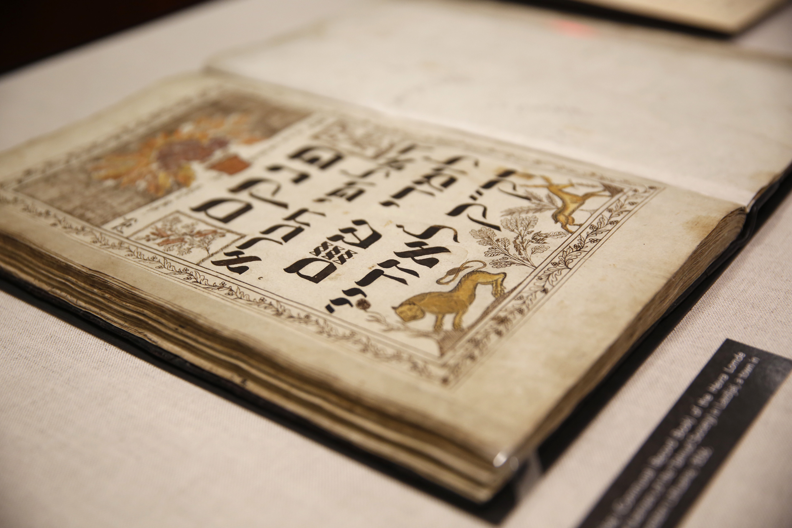 YIVO unveils lost Jewish documents thought to have been destroyed during the Holocaust (THOS ROBINSON / GETTY IMAGES NORTH AMERICA / AFP)