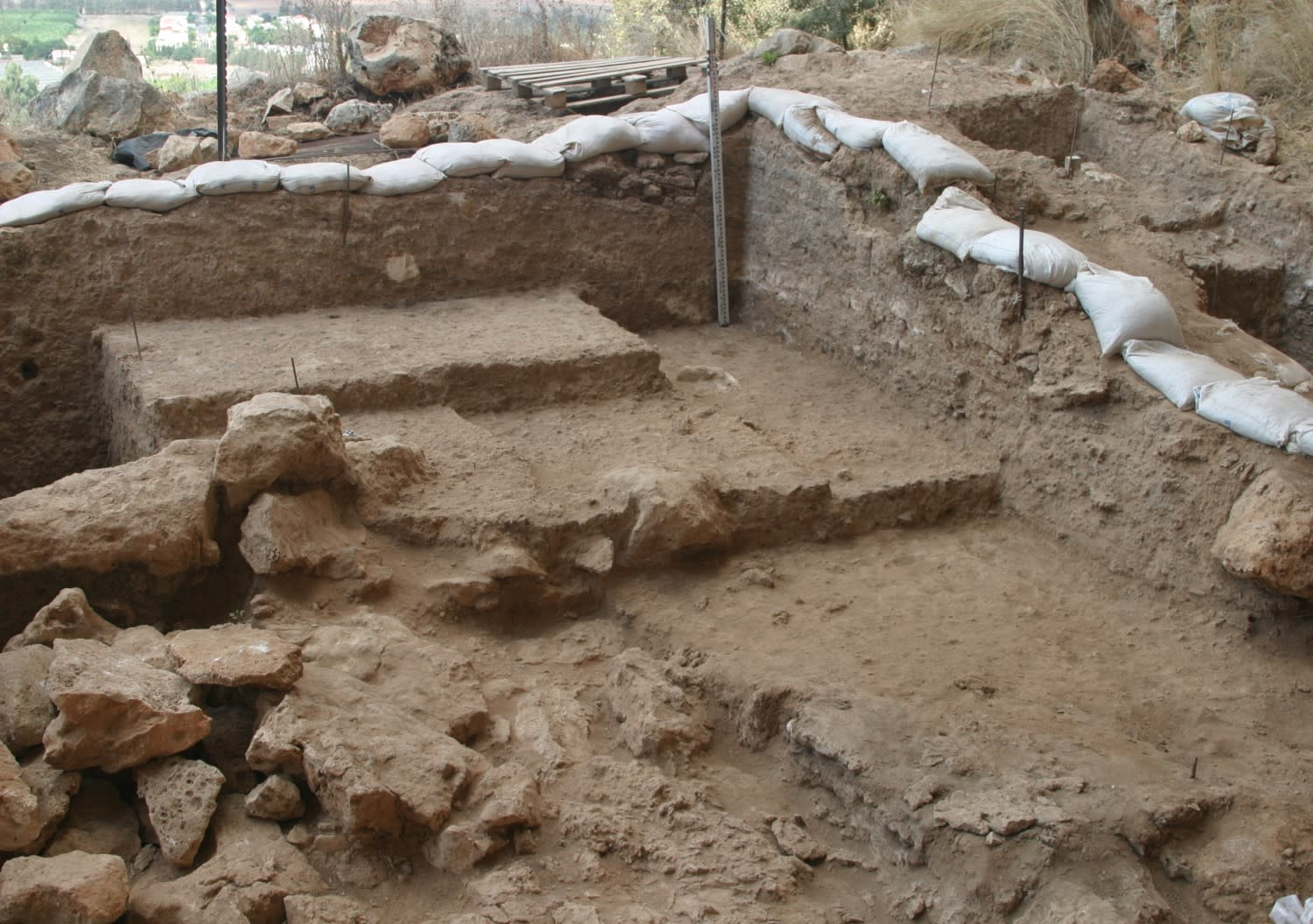 The excavated area where the fossil was found. (COURTESY OF MINA WEINSTEIN EVRON / HAIFA UNIVERSITY)
