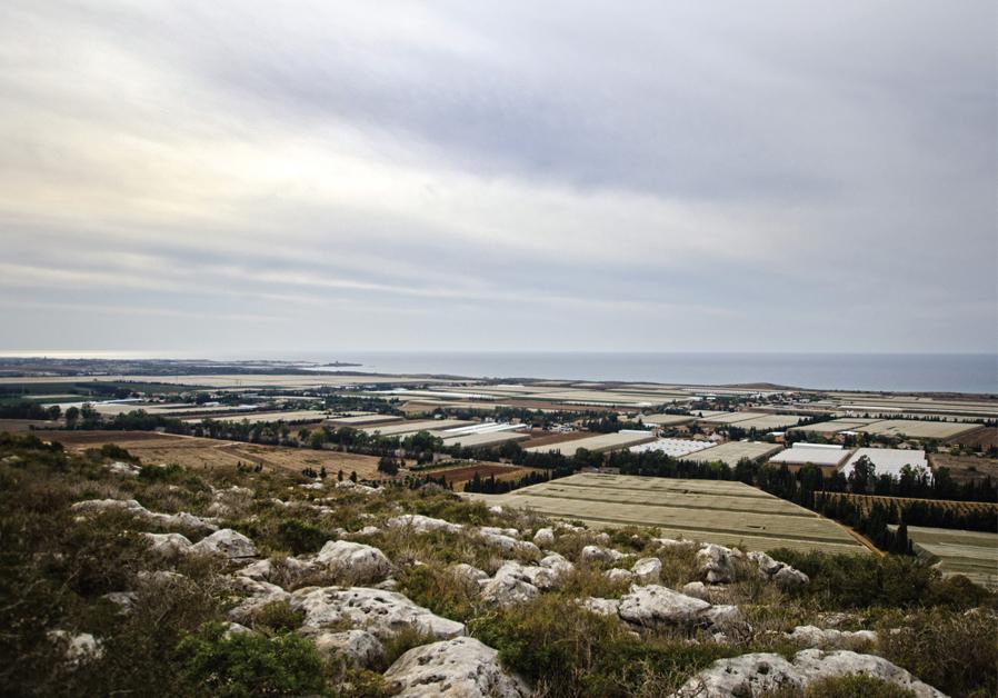 Carmel National Park (HADAR YAHAV)