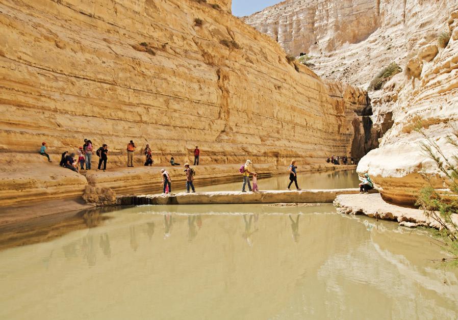 Ein Avdat National Park (Hadar Yahav)
