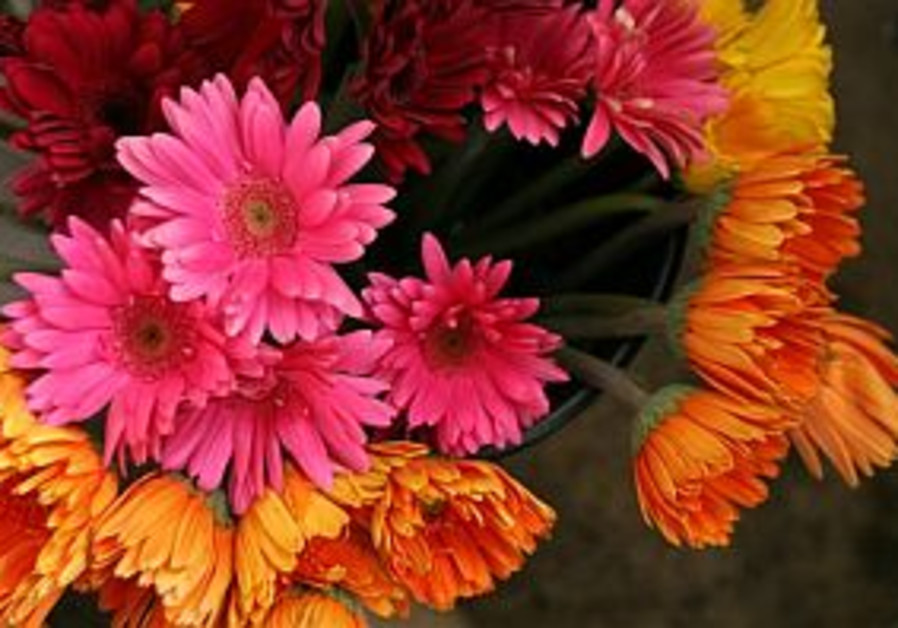 UK protesters try to hurt Israeli flower sales