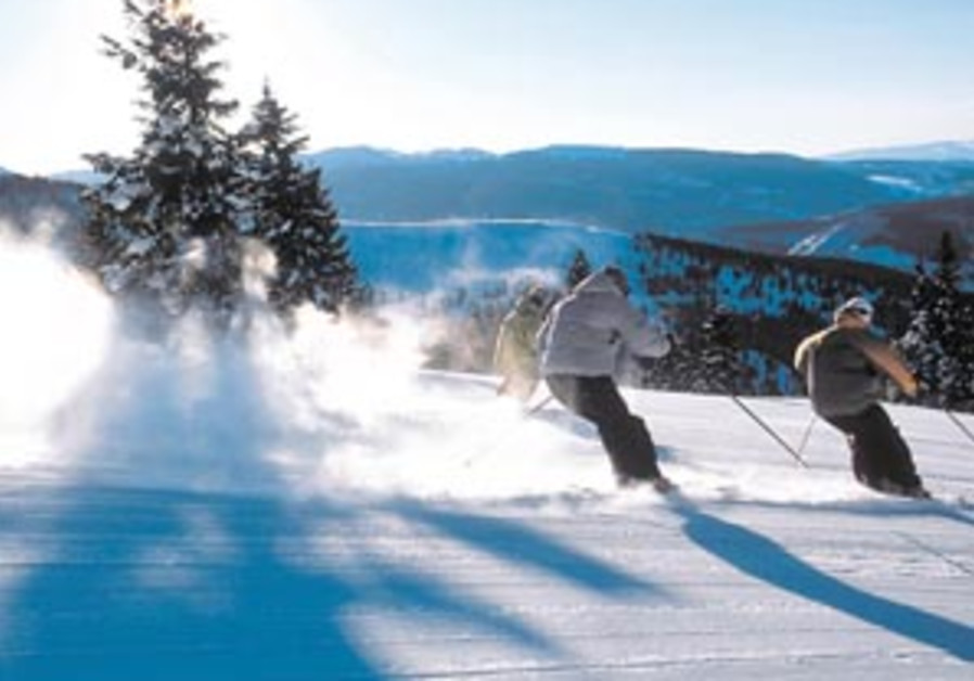 skiing 88 298