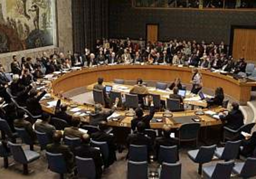 UNSC tackles global warming