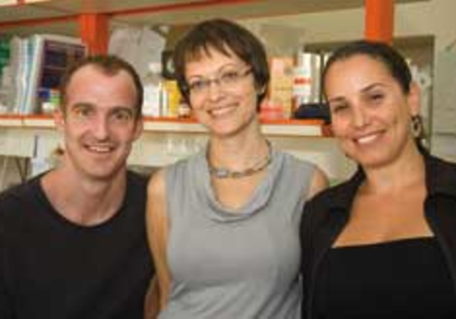 elzheimer team fit doctor 248.88