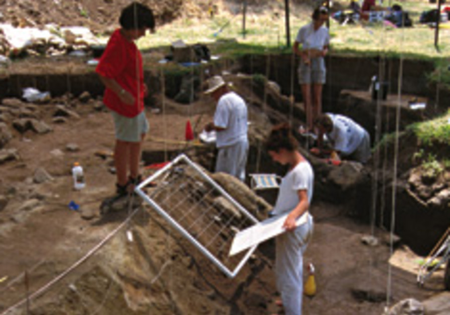 bnot yaacov archaeology 248.88