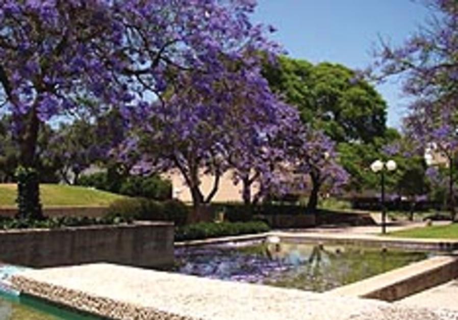 Kfar Saba park 248.88