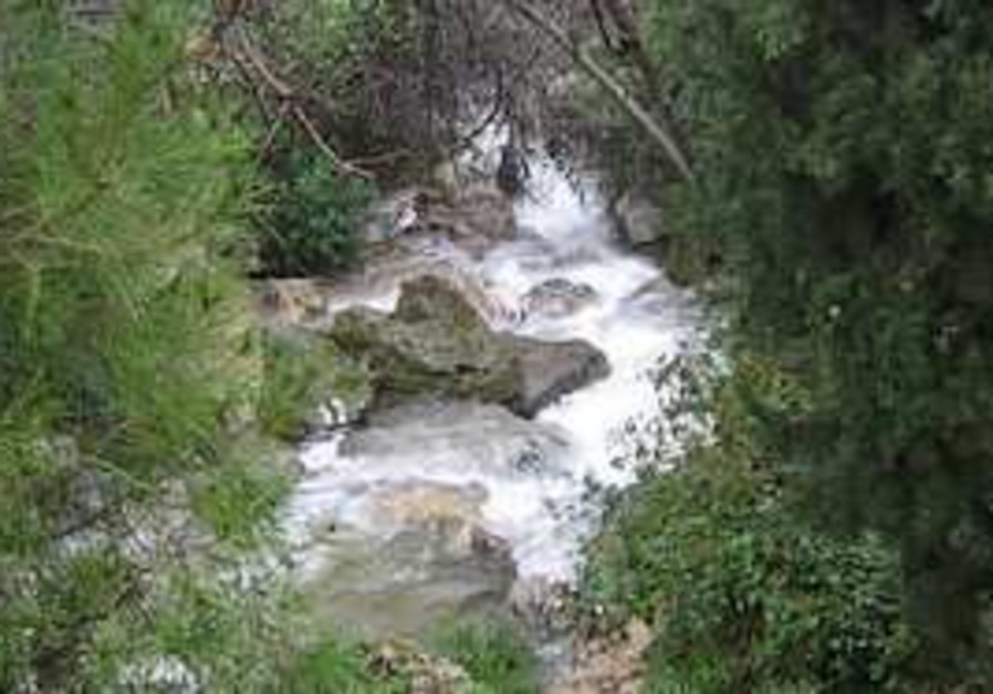 The Meron stream flows freely after torrential rai