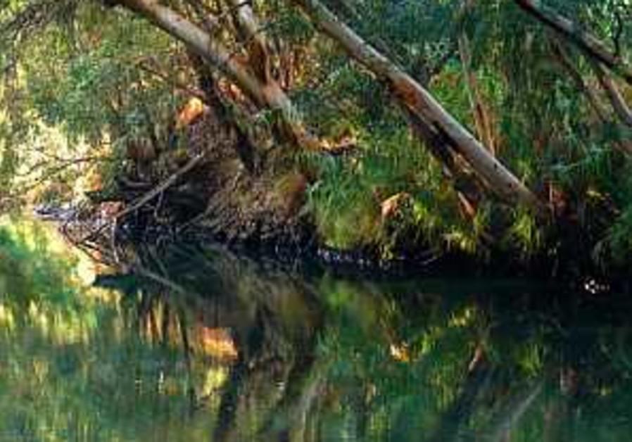 Brazilians flock to Jordan River for mass baptism