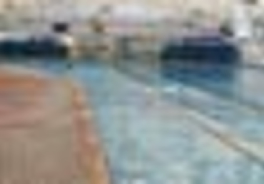 The Jerusalem Pool (Liat Collins).