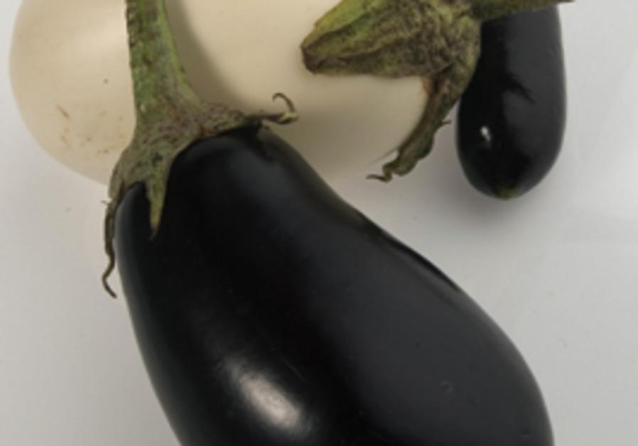 SPECIALTY eggplants.