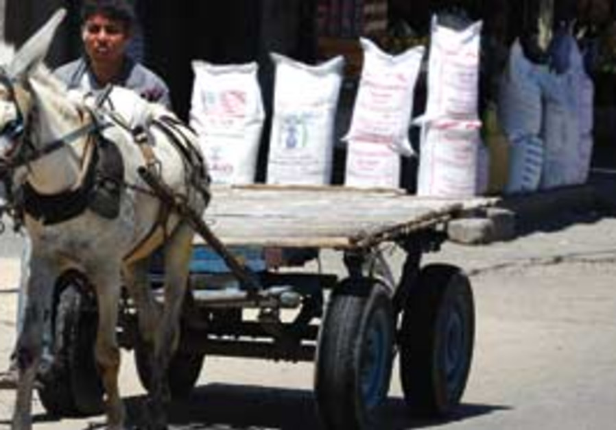 Palestinian boy drives donkey past UN food aid