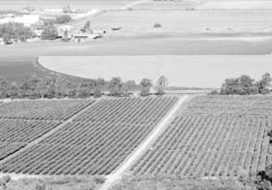 agriculture biz 88 298