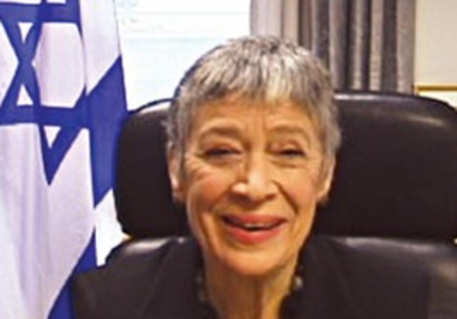 UN ambassador in chair