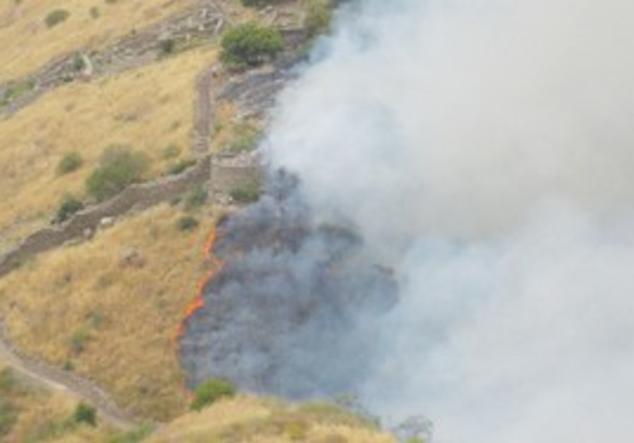 A BLAZE ravaged the Gamla Nature Reserve on May 27