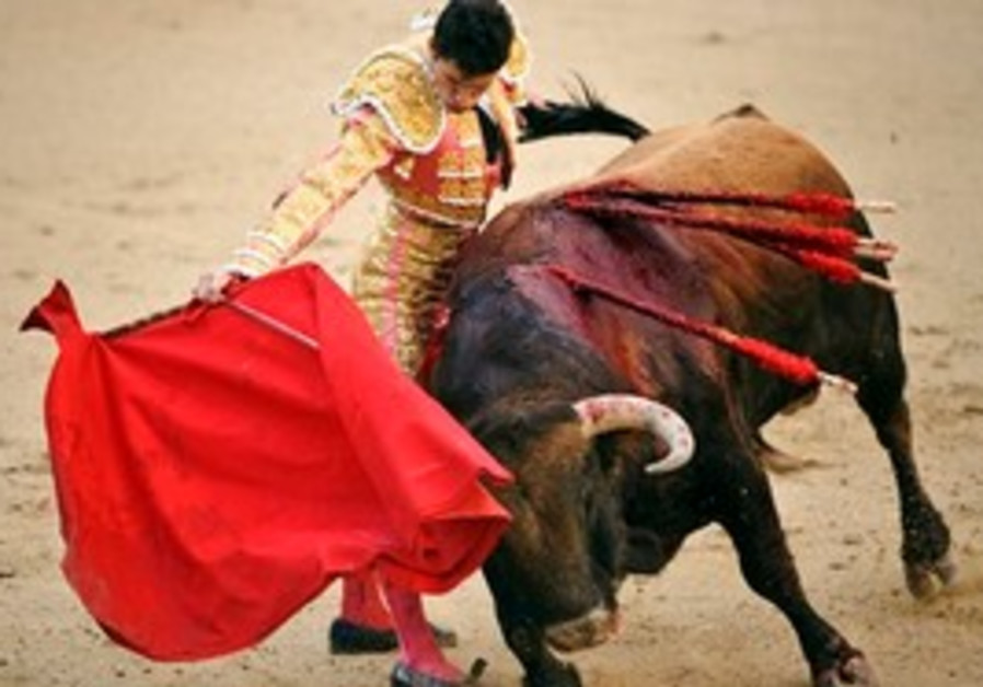 File - In this April 4, 2010 file picture Spanish matador Daniel Luque performs with a bull from Nun