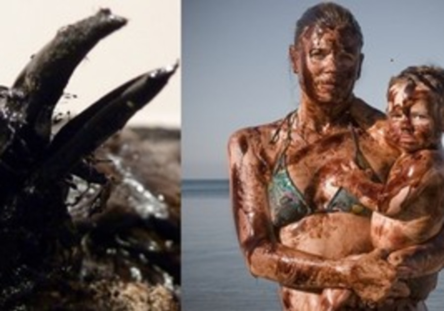 Left: 'Struggeling Bird'; Right: 'Crude Awakening'