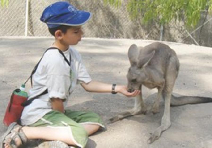 GAN GAROO. When was the last time you brought breakfast to a kangaroo?
