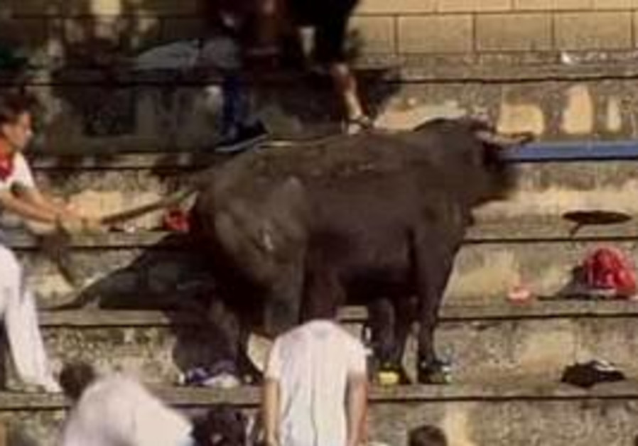 A bull jumped 10 meters into the stands in Tafalla, Spain.