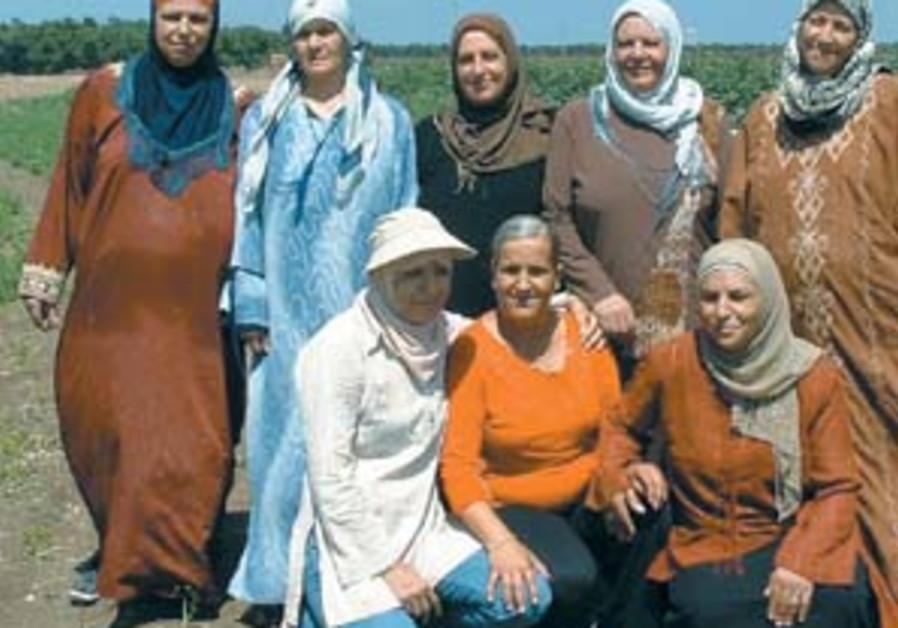 women land 88 298