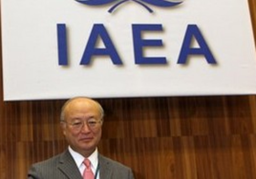 Director General of the International Atomic Energ