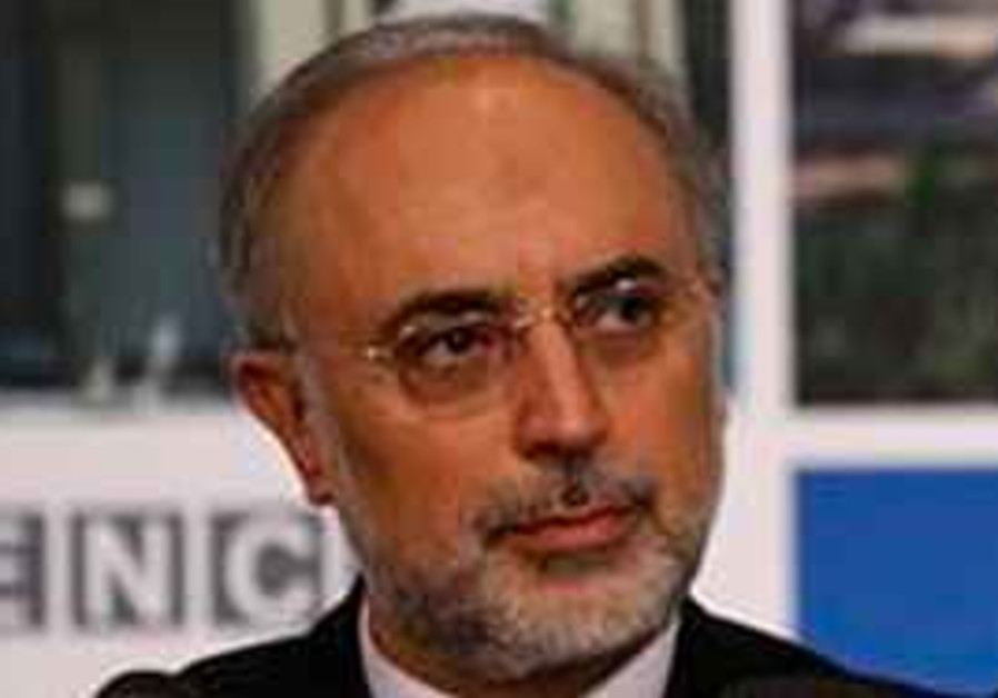 Head of the Iran's Atomic Energy Organization, Al