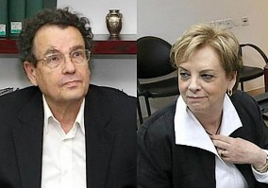 Ministerial committee puts off talk on Friedmann's judicial review bill