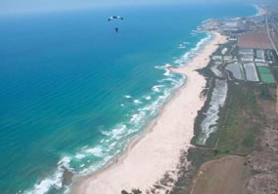 coastal clean88298a