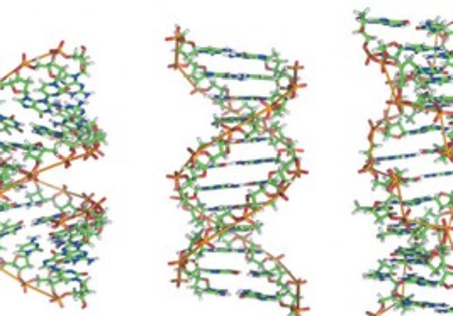 Strings of DNA