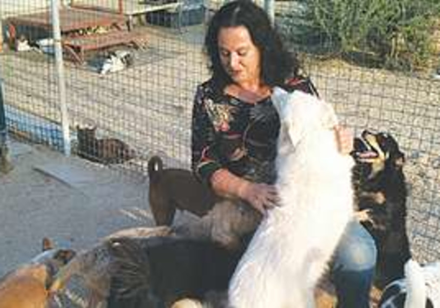 Michal Golan with her dogs
