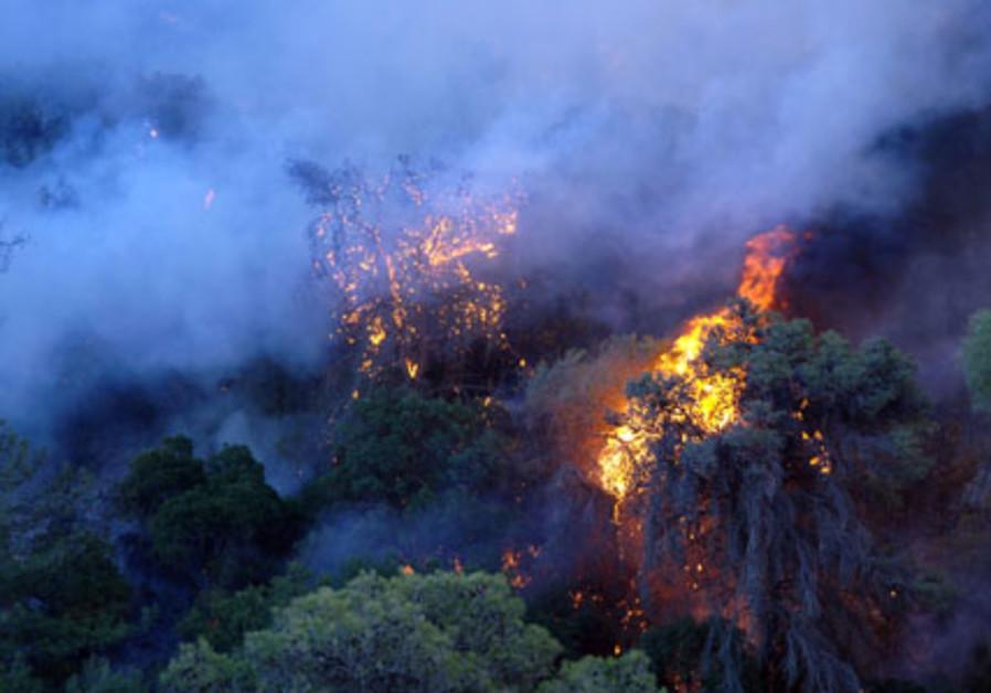 KKL - Carmel forest fire