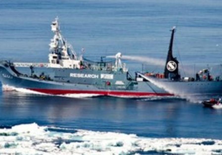 Japanese whaling ship No. 3 Yushin Maru