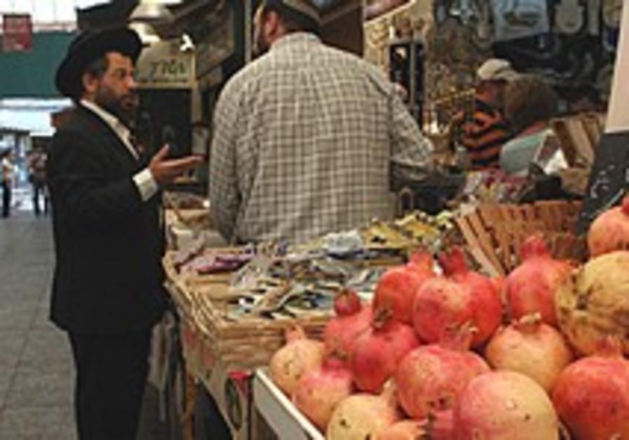 Rebel rabbis seek break from Shmita rule
