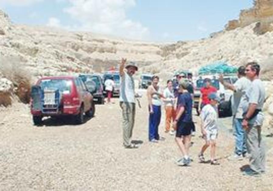 Development of the Negev