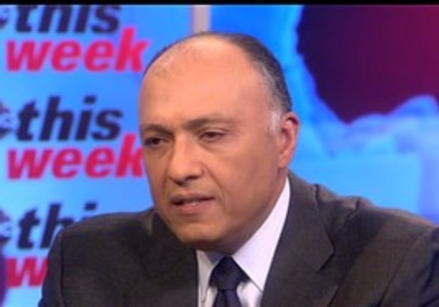 Egypt's ambassador to the US Sameh Shoukry