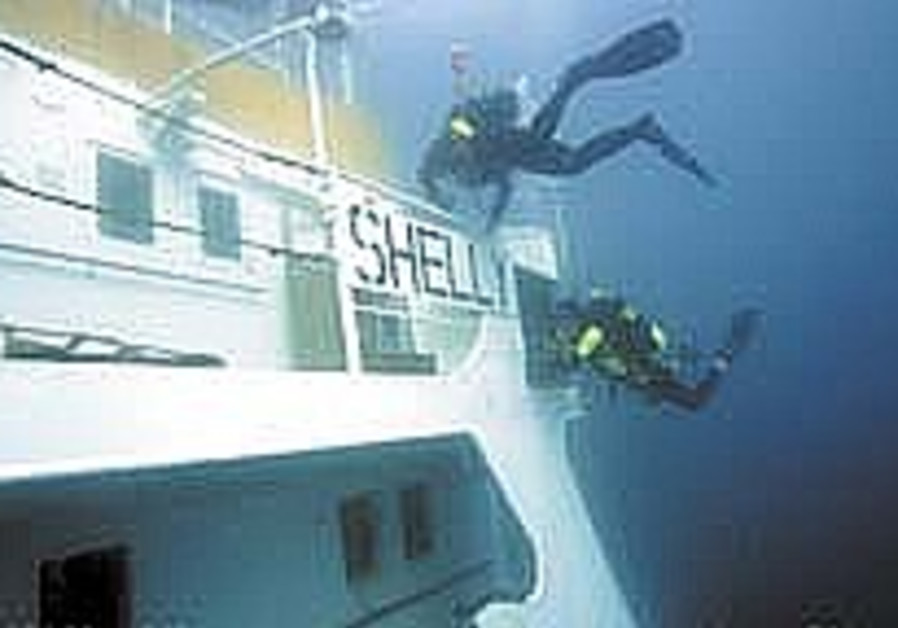 My Story: Diving the 'M/V Shelly'
