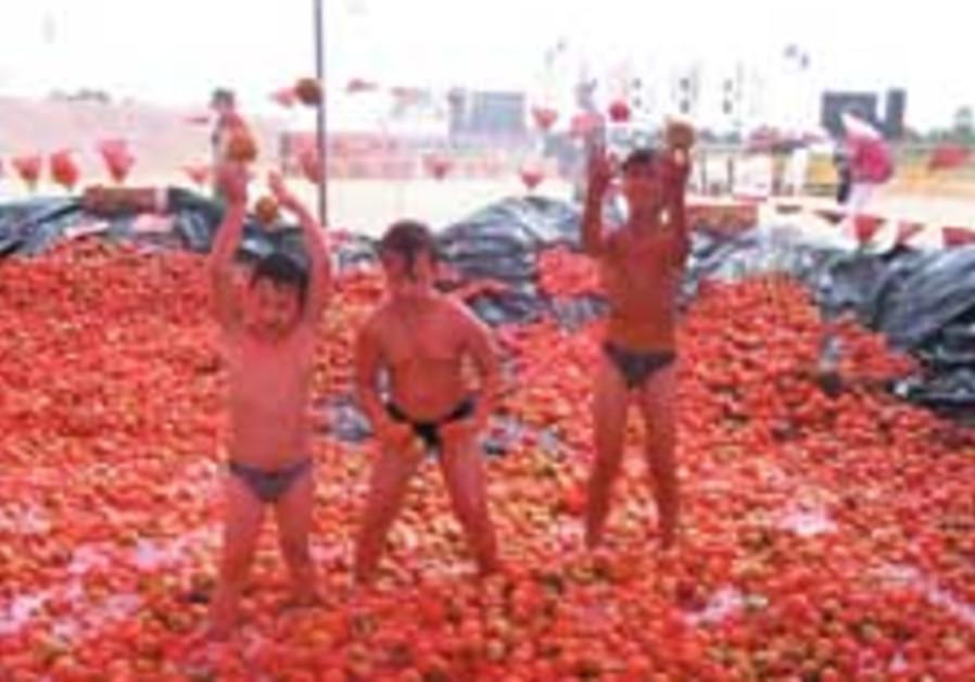 tomato fest 88 224