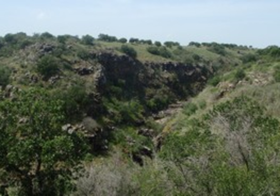 Yehudia national park
