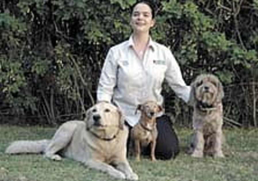 Bark Busters' founder seeks to tame Israeli hounds