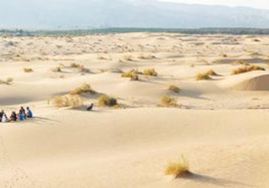 Samar sand dunes, north of Eilat