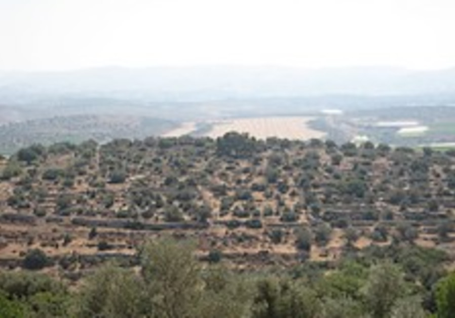 Greens against Lachish housing project