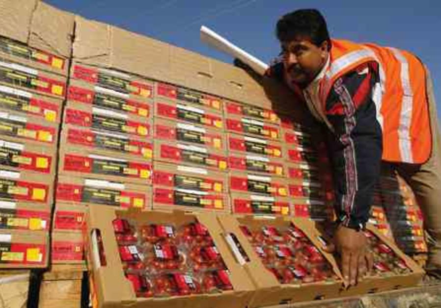 Gazan Tomato Export