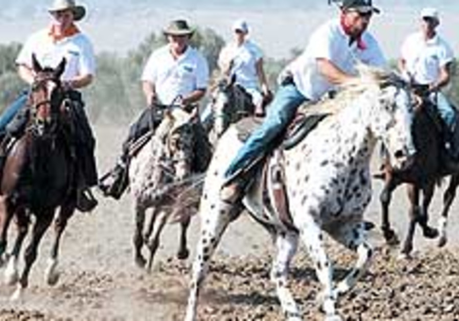 bank leumi horses 88 224