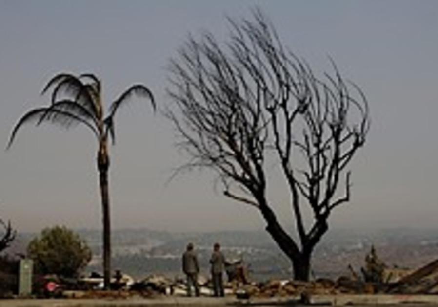 bush tours fires 224.88