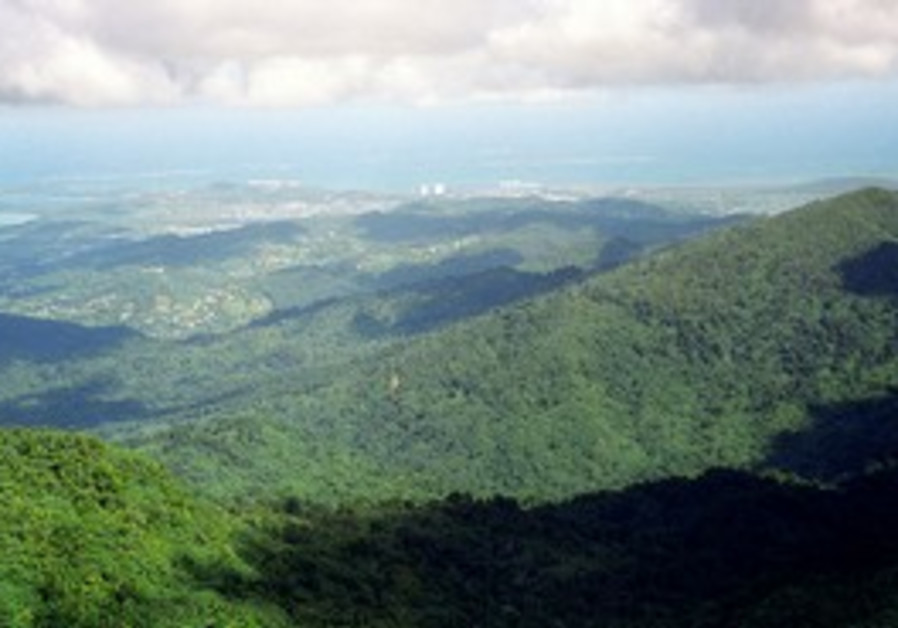 Luch green landscape of Puerto Rico