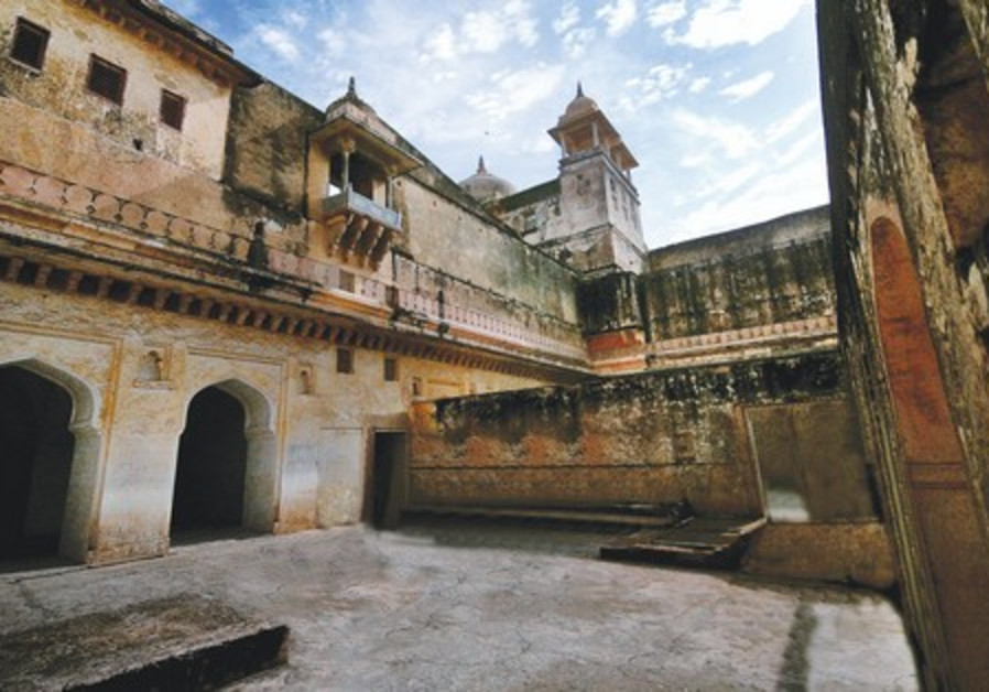 Picture from the Parasha