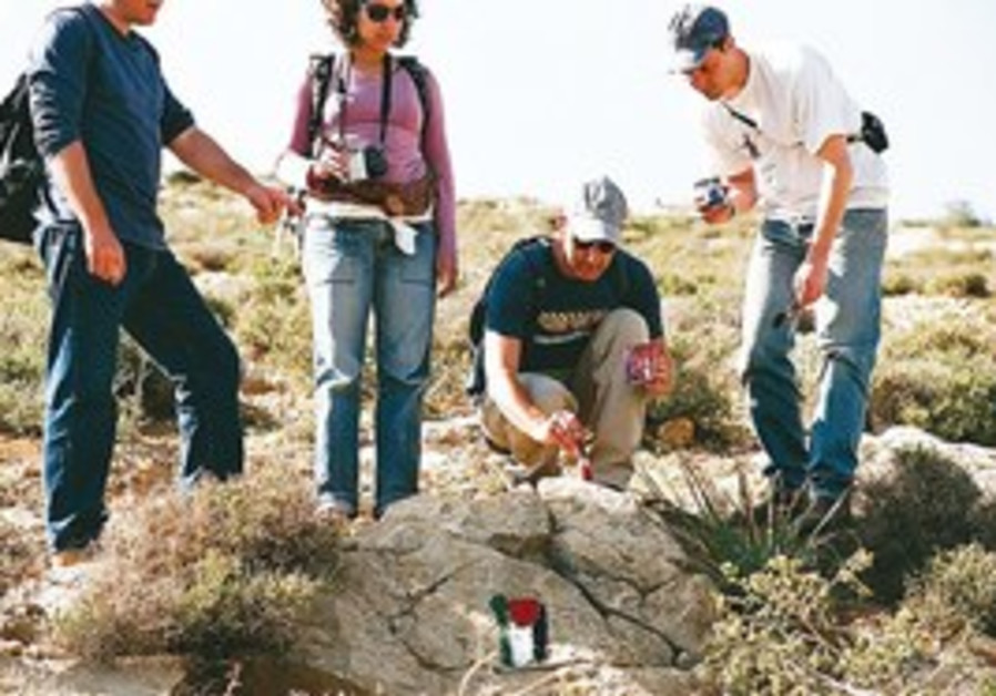 Activists work on the Palestinian National Trail.