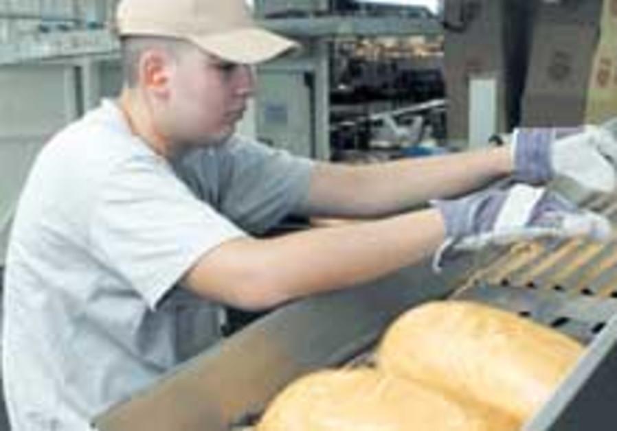 bread biz 88 224