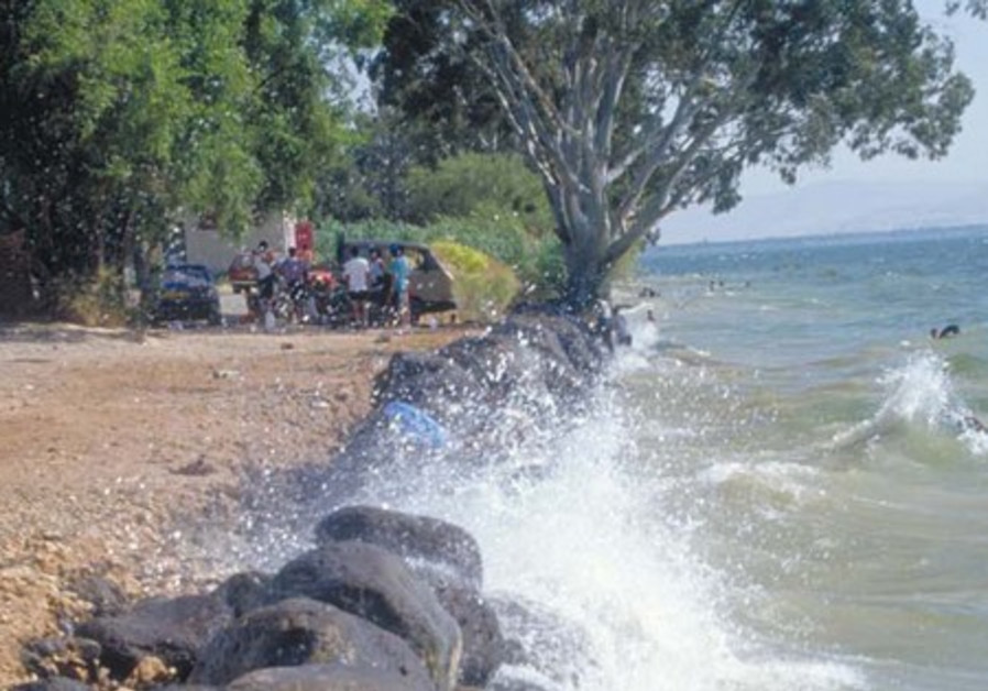 People swim in Lake Kinneret