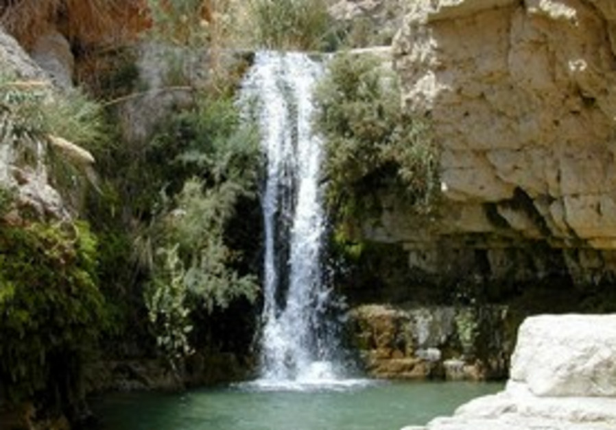 Hiking in Ein Gedi