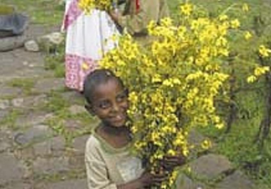 ethiopian 224.88
